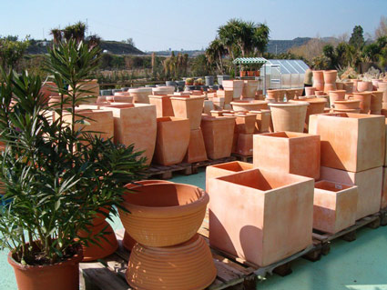 wide selection of pots available