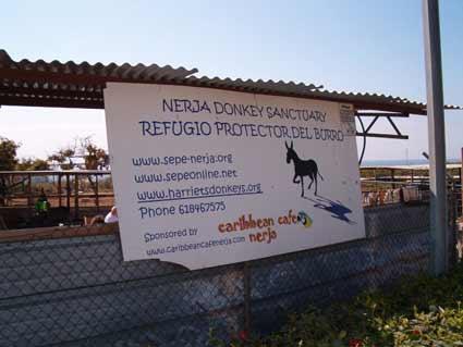 Sepe-Nerja Donkey Sanctuary